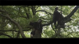 Deershed Festival – The Wilderwood / Flanagan Collective - Vimeo thumbnail